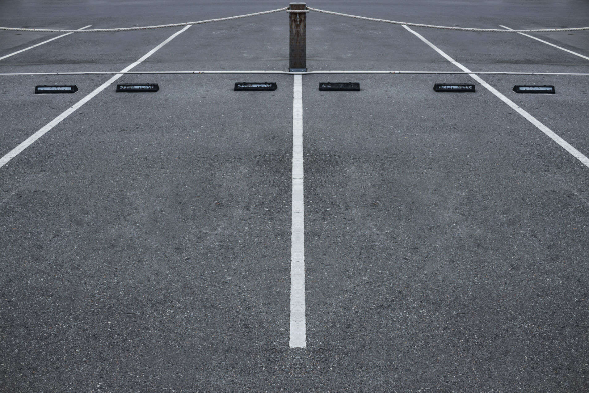 Empty car parking spaces with white lines